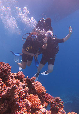 OWD Diving Course 3 Days